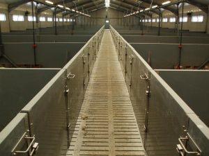 20-01-Pig-Slats-Livestock-Flooring